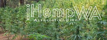 Western Australia Now Has 90 Licensed Hemp Growers