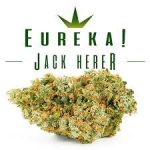 The Bruce Banner and Jack Herer: Landmarks – An Introduction to Medical Marijuana