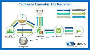"Article ""Taxed to Death: Follow One Gram of Weed along California's Twisted Path from Seed to Sale"""