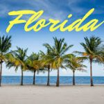 Florida adds eight more medical marijuana business licensees