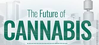 Legal Cannabis Predictions: What the Future of Legal Weed Looks Like