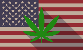 Federal Legalization – Then What?