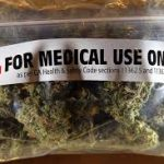 Dr's Want More Info Before They Start Prescribing Medical Cannabis Says Queensland University of Technology