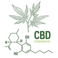 Lawyers Tell MJ Biz /Hemp Industry Daily What's Going To Happen Next With Regulation Of CBD In The USA