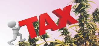 Where Is CA Cannabis Tax Revenue Going? Nobody Seems To Know Is The Answer
