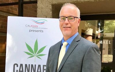 CalCannabis Harming CCA's