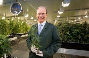 Australia: Cann CEO Peter Crock Estimates Australian Cannabis Medical Patient Numbers Could Reach 300K Individuals