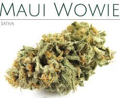Hawaii Gov Accedes To Cannabis Decriminalization