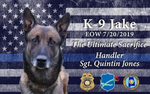 Alabama prison K9 dies after coming into contact with synthetic marijuana