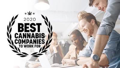 "Cannabis Business Times and Cannabis Dispensary Publications Launch ""Best Cannabis Companies To Work For—2020"""