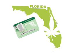 Lighting Up Florida's Medical Marijuana People: The Medics Series, Part 1