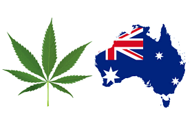 Article: The Cannabis Landscape On A 'Roll' In Australia – Latest Updates For Market Enthusiasts