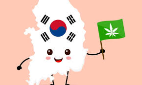 South Korean medical cannabinoid imports surpass 300 units since law passed