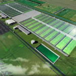 Australia: One Of World's Biggest Medicinal Cannabis Grow Facilities To Be Built In Victoria Says Cannatrek