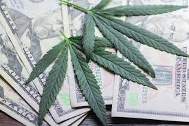 Article: Reason Foundation – Capitalization Requirements for Marijuana Businesses Are Unjust and Counterproductive