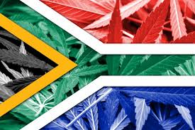 South Africa Media Report Says There Are Now 70 Cannabis Dispensaries Operating In The Country