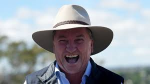 "Australian Conservative Politician, Barnaby Joyce says,""If you want to pull a few cones knock yourself out, god knows I did when I was at uni. But that does not mean for one second that there is some grand elixir"""