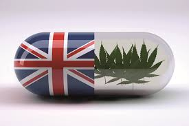 Article – Faegre Baker Daniels: Key Considerations for U.K. Investment in the Legal Cannabis Industry Abroad