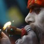 Indian Legal Website Takes Retrogressive Stance On Cannabis Regulation