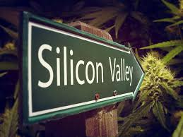 Article: Tech pioneers wanted: How Silicon Valley could solve cannabis problems
