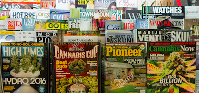 The Cannabis Media Market Stumbles Along…….