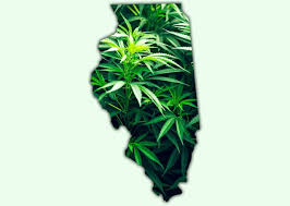 More Illinois Localities Vote For The 3% Regulated Cannabis Tax Rate