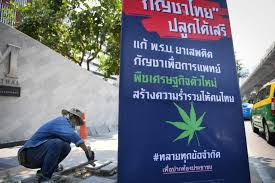 Thailand: Draft Bill To Look At Allowing Thai Citizens To Grow Up To Six Plants At Home