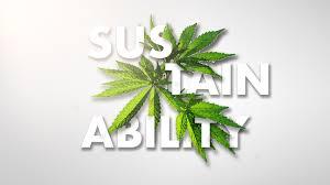 Illinois Legislation Demands Sustainability From Indoor Cannabis Growers