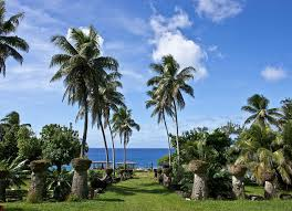 The Mariana Islands Need A Managing Director For Their Cannabis Commission