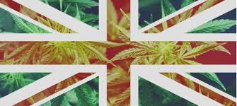 IG Group London Provide Their Overview As To What They Think The UK Cannabis Market Is