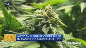 Mexico, Only A Month To Go Before Legislators Have To Comply With Supreme Court Order On Regulated Personal Cannabis Use