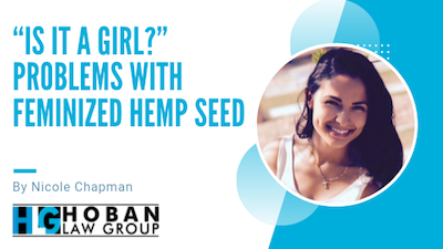 Problems with Feminized Hemp Seed