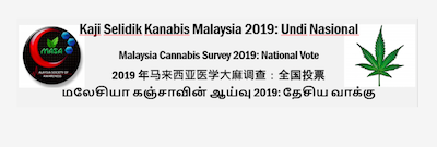 Malaysia Society of Awareness (MASA) launches national survey for cannabis in Malaysia.