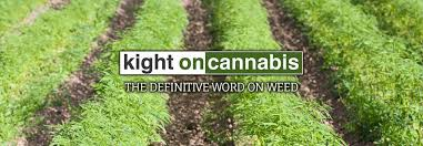 KIGHT ON CANNABIS: USDA HEMP INTERIM RULE: CRISIS OR OPPORTUNITY?