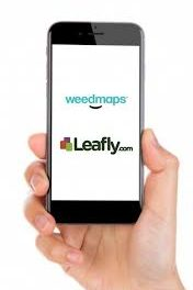 Weedmaps Lay Off 25% of Workforce, Leafly Freezes Hiring & Cuts Non Essential Travel