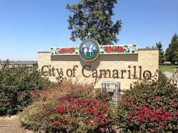 Camarillo City Council rejects industrial hemp moratorium in 3-2 vote