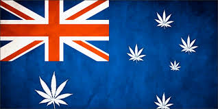 Stockhead Poses The Question? Are Aussie Cannabis Companies A Good Purchase ?