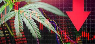 Cannabis ETF falls toward record low, as bearish bets increase