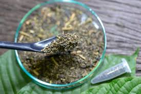 HOW TO CHOOSE THE BEST RED VEIN KRATOM STRAIN?
