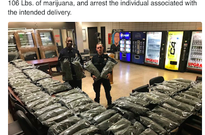 That NYPD Hemp Bust