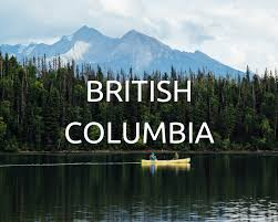 Canada: Dried cannabis vaporizers  20% tax in British Columbia