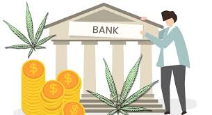 Marijuana Moment Report: Small Increase In Banks & Financial Institutions Serving Cannabis Industry