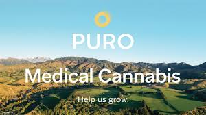 Medical cannabis company to make the most of Marlborough's 'California' climate