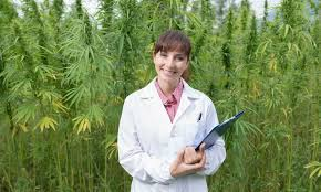 DEA Does Not Have The Resources To Test For Hemp Vs Cannabis Says Article
