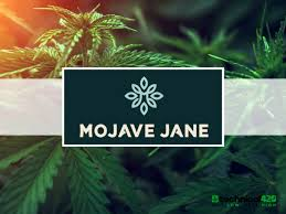 Press Release: Mojave Jane Brands and Bravo Distribution Reach Agreement on Reversal of Acquisition