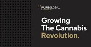 Canadian Company Pure Global Cannabis 'temporarily' lays off staff to conserve cash