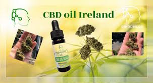 A guide to CBD oil in Ireland
