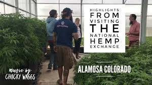 "CO Hemp Clone Farm, ""National Hemp Exchange"", Used Client's Money For Own Investment Purposes"