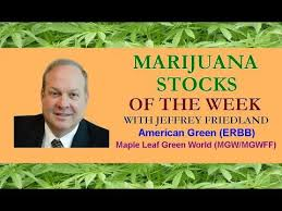 Author Fined $US4.1 Million By SEC For Spruiking Israeli Cannabis Outfit