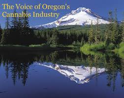 Oregon Retailers Of Cannabis Association Publish Final Newsletter Of 2019